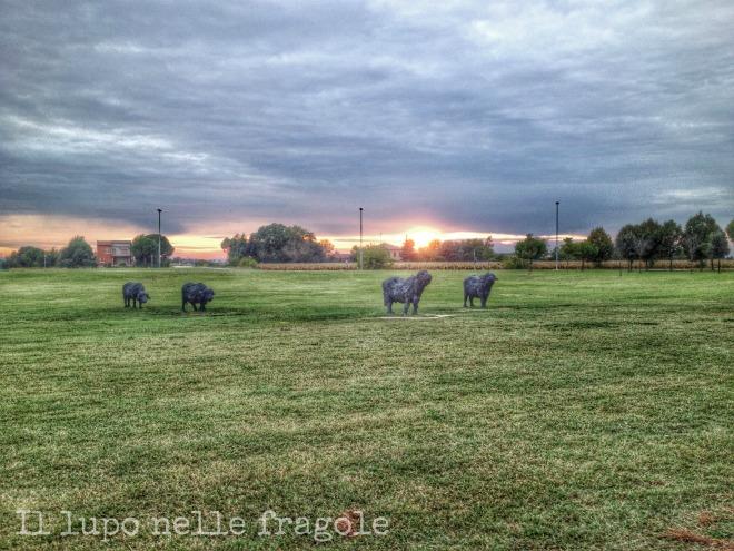 mufloni-al-tramonto-sant'appollinare-in-classe